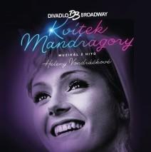 Kvítek mandragory – muzikál Praha